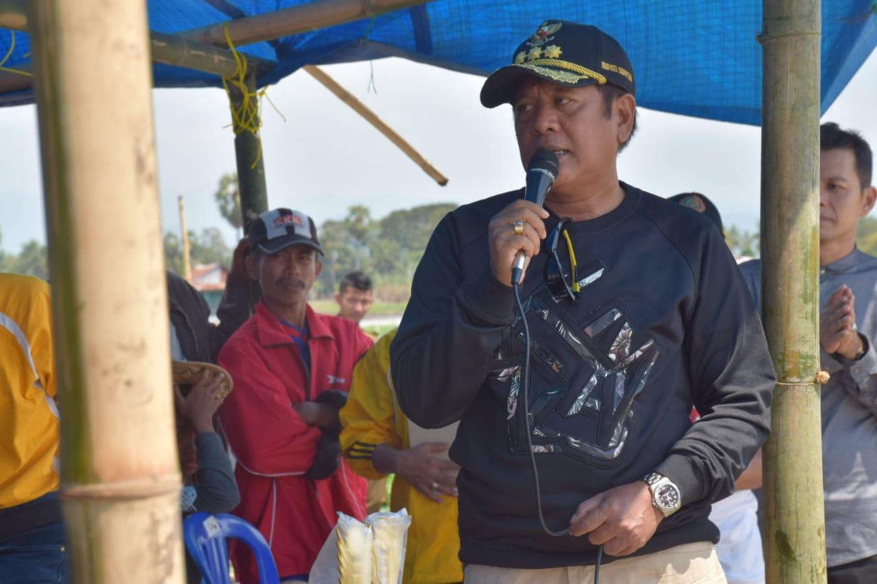 Bupati Soppeng : Budaya Patut Di Pertahankan
